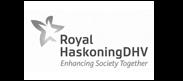 Logo Haskoning