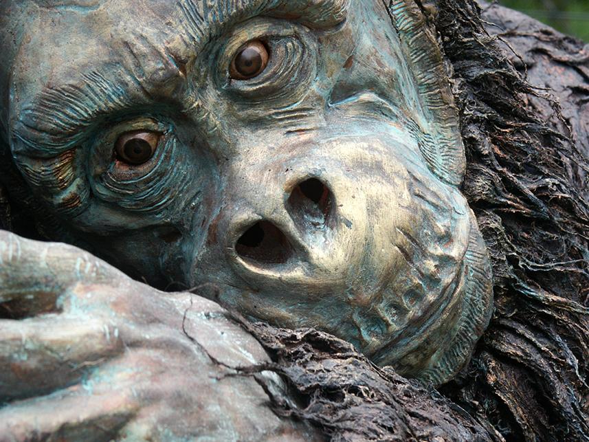 046 Aap - Ape - Living-Statue - Levend Standbeeld 01