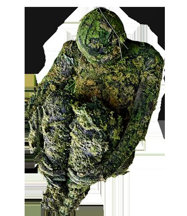 098 Mosmens - Moss Creature - Living Statue - Levend Standbeeld